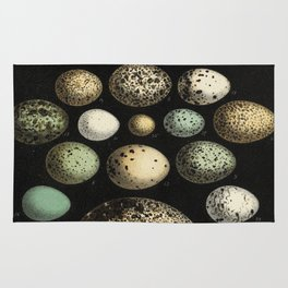 Naturalist Eggs Rug