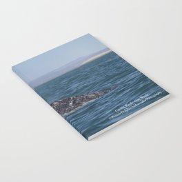 Cecilia, Pacific Gray Whale, Notebook
