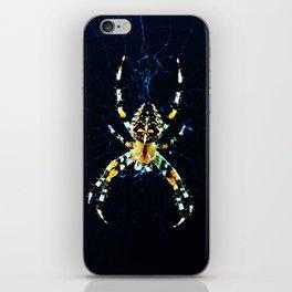 European Garden Spider iPhone Skin