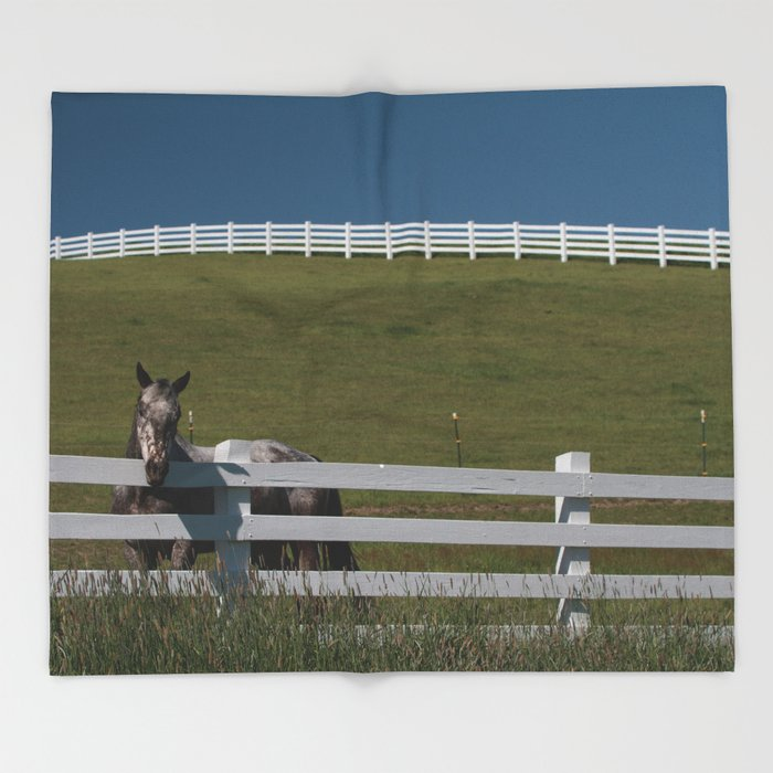 Horse in the Palouse Throw Blanket