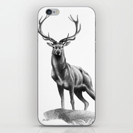 All Muscle - Red Deer Stag iPhone Skin