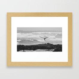 Bird of Prey Flying Over the Ocean Framed Art Print
