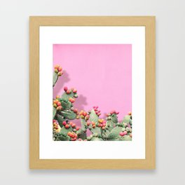 Prickly Pear plants on Pink Framed Art Print