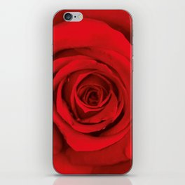 Lovely Red Rose iPhone Skin