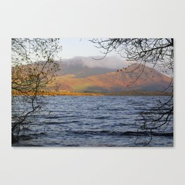 Skiddaw from bassenthwaite shore Canvas Print