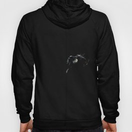 Le Chat Hoody