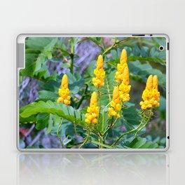 Popcorn Cassia Laptop & iPad Skin