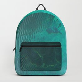 Silver Springs Backpack