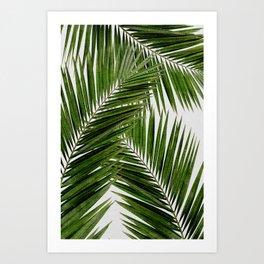 Palm Leaf III Art Print