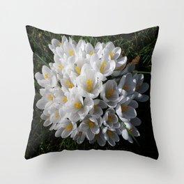 WHITE SPRING CROCUSES Throw Pillow