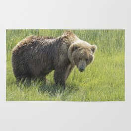 Don't Mess with Mama Bear Rug