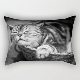 sleepy cat Rectangular Pillow