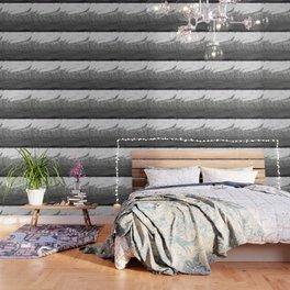 08-04-32 (.BMP Glitch) Wallpaper