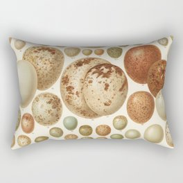 Antique Egg Lithograph Rectangular Pillow
