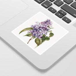 Lilac Branch Sticker