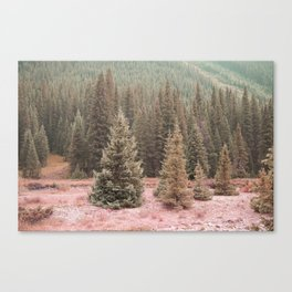 Look For Me In The Trees Canvas Print