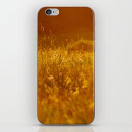 flower field at sunset iPhone Skin
