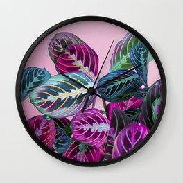 Prayer Plants on a Pink Wall Clock