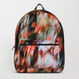 Transition Backpack