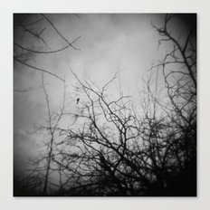 Branches and Bird Canvas Print