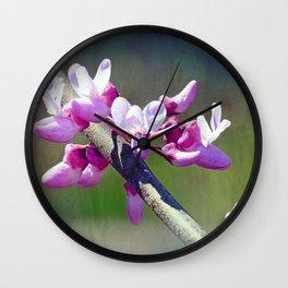 Redbud Flowers Wall Clock