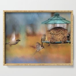 Finches Around A Feeder Serving Tray