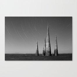 Grey black cones 4 Canvas Print
