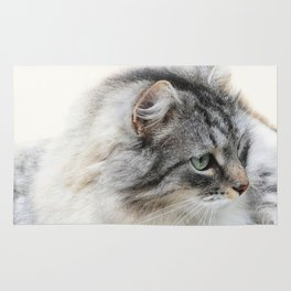 Silver Cat Rug
