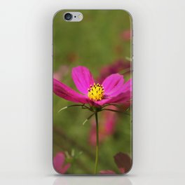 Floral Spotlight iPhone Skin
