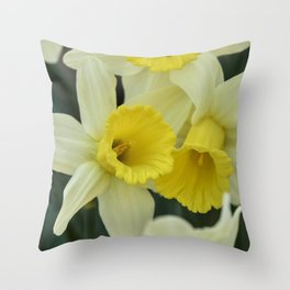 daffodils bloom in spring in the garden Throw Pillow