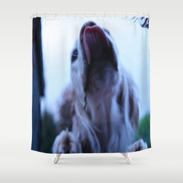 Excited doggy Shower Curtain