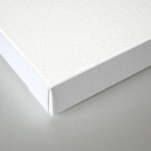 Zoom zip Canvas Print