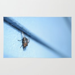 Bluebottle Blowfly Close Up (Macro) Rug