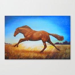 The Race Horse Canvas Print