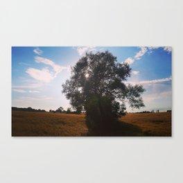 Skåne sommar Canvas Print