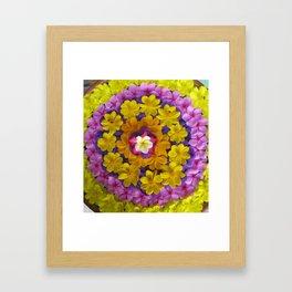 Flower Bath - Thailand Framed Art Print