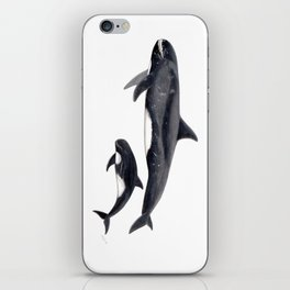Pygmy killer whale iPhone Skin