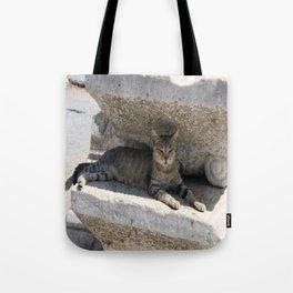 Guardian Of The Ruins Tote Bag
