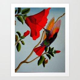 Magnificent Hummingbird Art Print