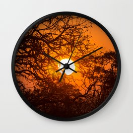 Sultry sun setting behind the sausage tree Wall Clock