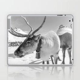 REIN 2 Laptop & iPad Skin