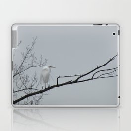 Elegant Egret Laptop & iPad Skin