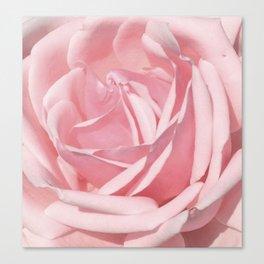 Landscape Summer Rose Canvas Print