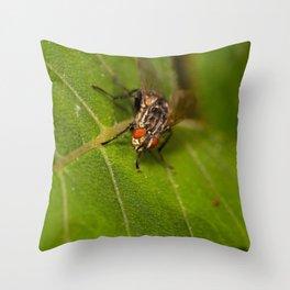 Macro dicky Throw Pillow