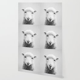 Sheep - Black & White Wallpaper
