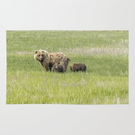 Mother Brown Bear With Her Two Cubs, No. 1 Rug