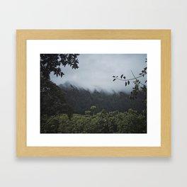Foggy Oahu Green Framed Art Print