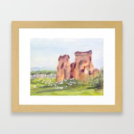 Rome, Italy - The Aqueduct and the Sheep Framed Art Print