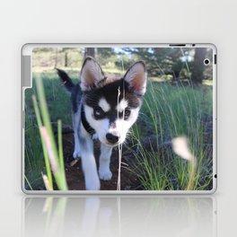 Koa On The Hunt Laptop & iPad Skin