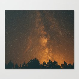 The Milky Way (Forest Landscape Photography, Starry Night Sky Photo) Canvas Print